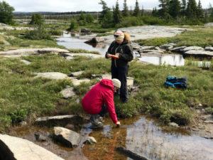 Anne Jungblut sampling cyanobacteria and water samples in Cambridge Bay